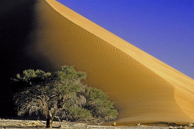 "Verlosung: Live-Dia-Show ""Namibia"""