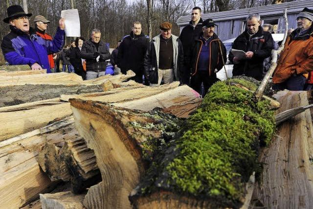 Reichlich Holz für die Hütte