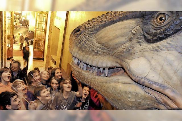Museumsnacht bietet acht Stunden Kultur für jedermann