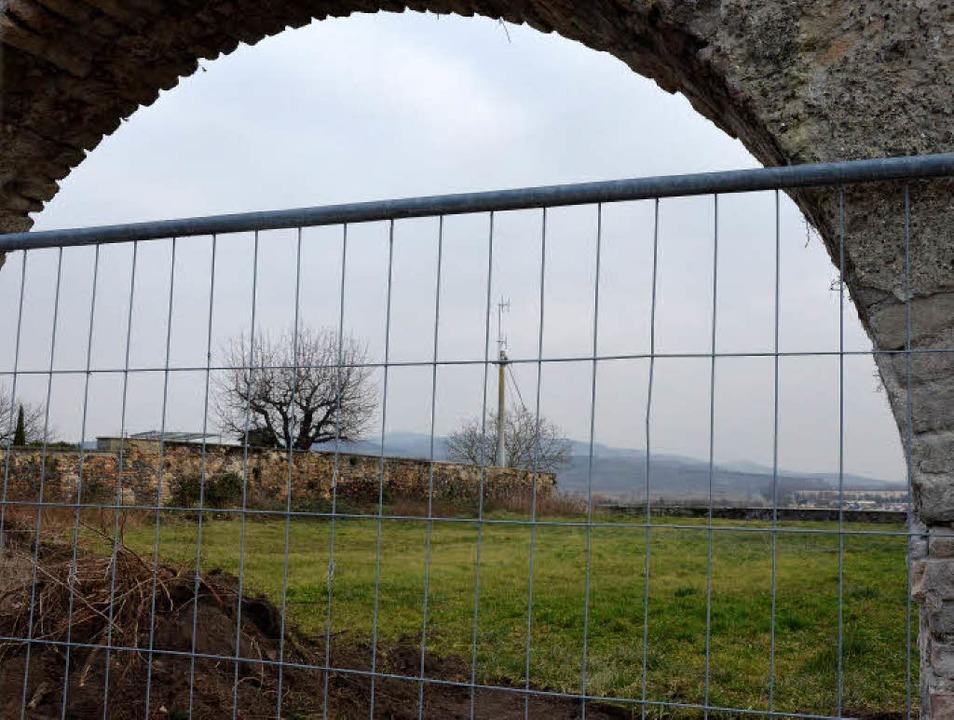 Der ehemalige Klostergarten auf dem Br...rliche Ausblicke auf den Kaiserstuhl.   | Foto: claudia müller