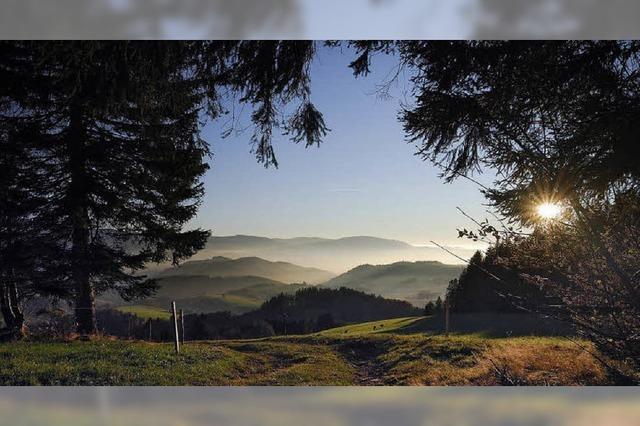 Der Schwarzwald - Farben einer attraktiven Landschaft