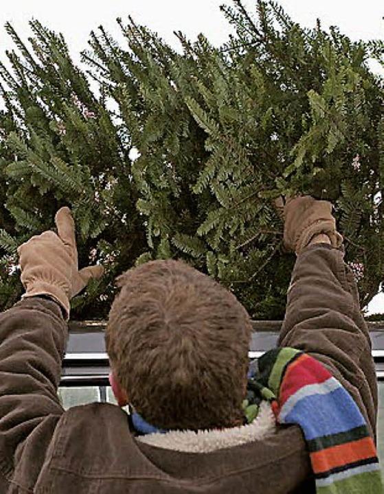 Ausgedient haben die alten Christbäume.   | Foto: fotolia