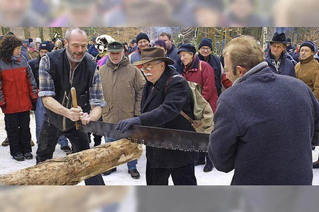 Rekorderlöse für das Holz