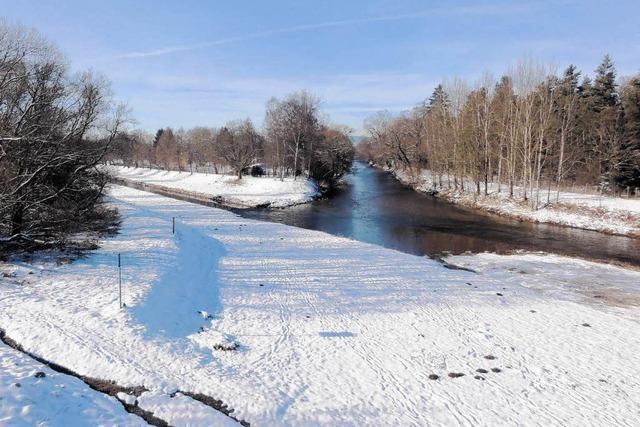 Neuer Flusslauf - die Donau darf sich wieder schlängeln