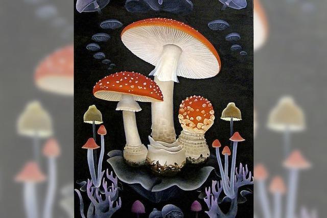Halluzinogene Pilze neben dem Ursprung der Welt