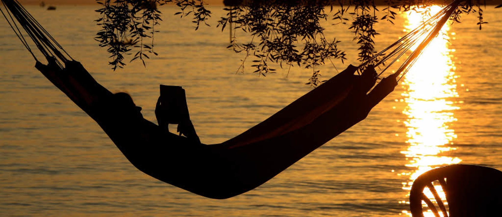 festivitas mulhouse der duft des sommers freizeittipps badische zeitung. Black Bedroom Furniture Sets. Home Design Ideas