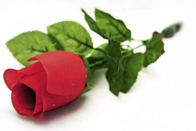 Eine sprechende Rose für den Valentinstag