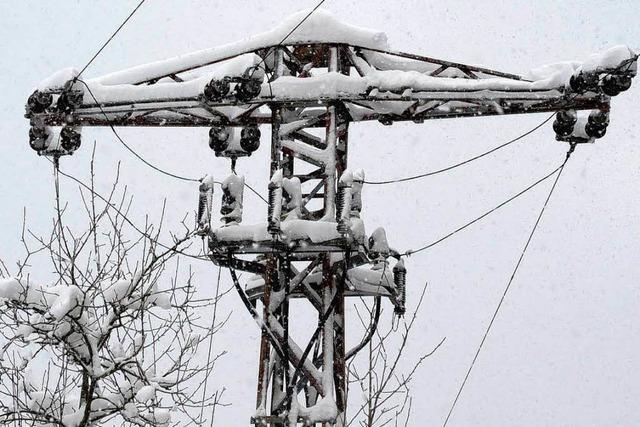 Stromausfall kann Narren nicht bremsen