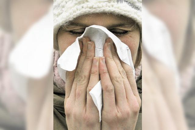 Kreis Emmendingen: 190 Grippeerkranke sind beim Gesundheitsamt gemeldet