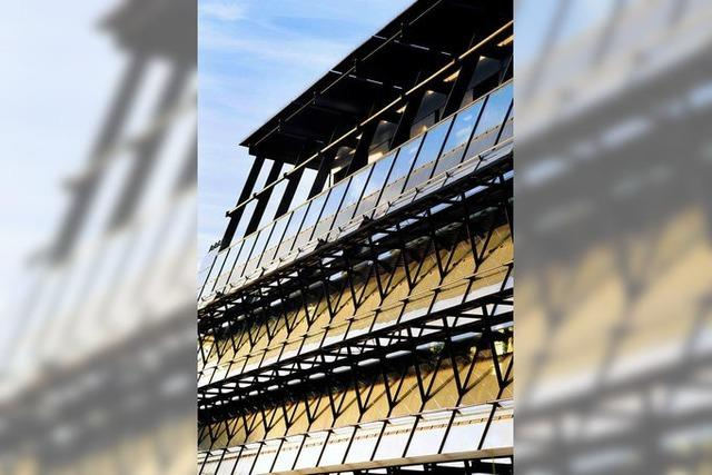 Solar-Fabrik: Umsatz geht um 80 Millionen Euro zurück