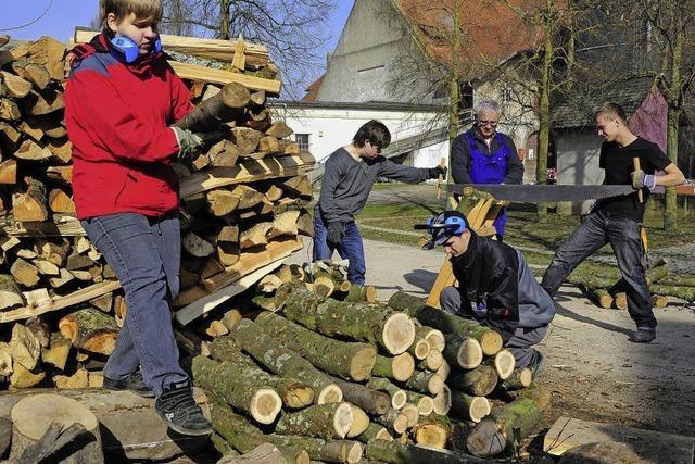 Viel Spaß beim Holzspalten