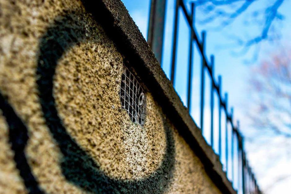Im Stühlinger steht eine Mauer mit vielen Gesichtern. (Foto: Carlotta Huber)