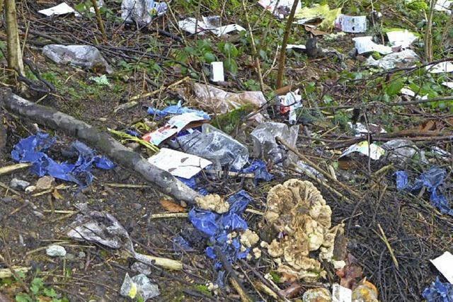 Tauwetter gibt große Menge Müll frei