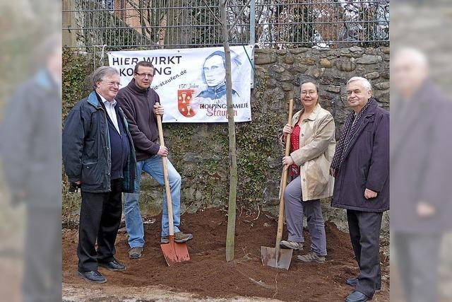 Kolpingfamilie pflanzt Baum