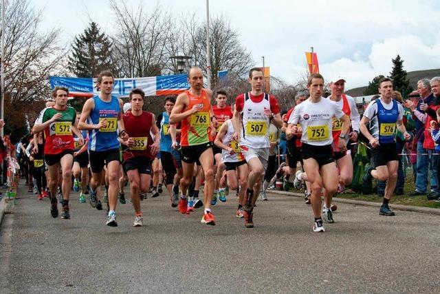 445 Teilnehmer beim 28. Kaiserstuhllauf