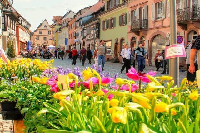 Bunter Aktionstag zum Start in den Frühling