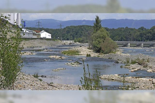 Der Kies im Rhein soll wieder rollen