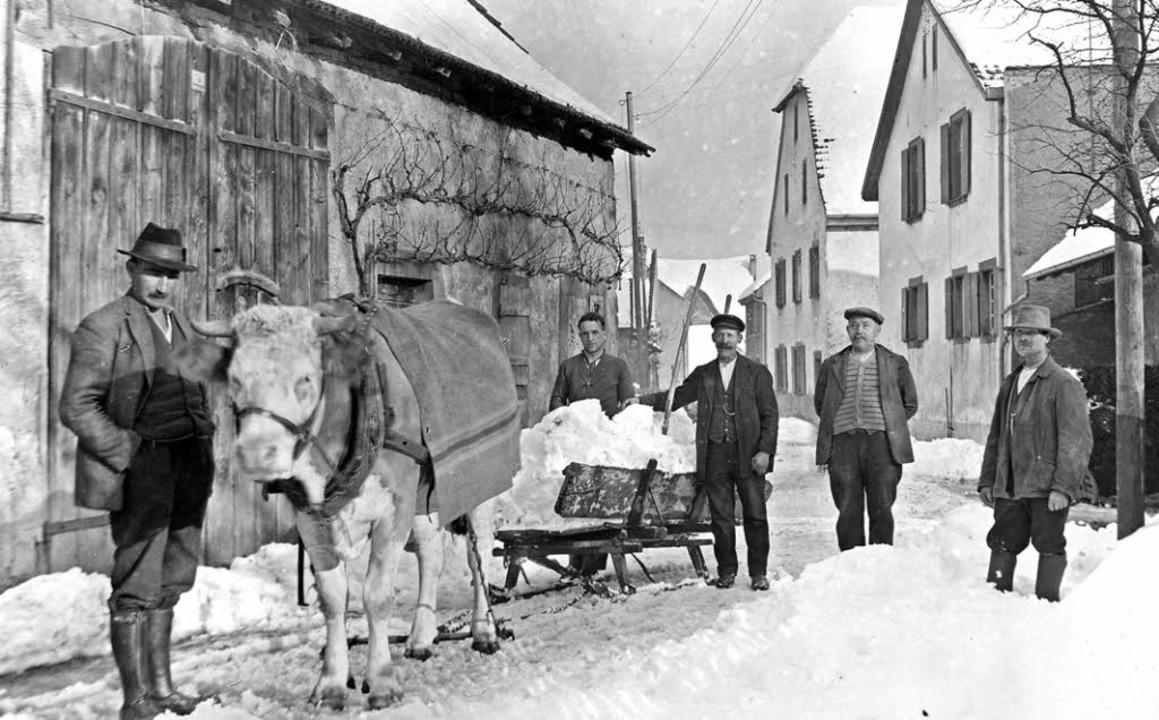 Mit Hilfe einer Kuh wird  Schnee abtransportiert.   | Foto: Privat