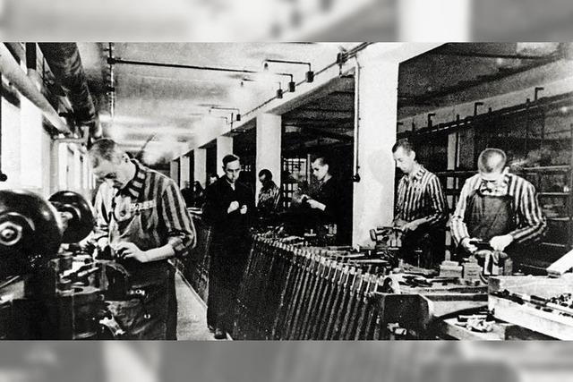 Historiker kritisiert neue US-Studie zum Holocaust