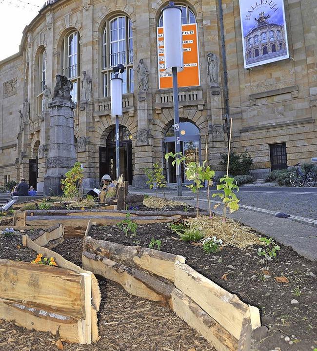 Die Pflanzaktion von Transition Town v... Stadttheater in einen urbanen Garten.  | Foto: Anita Fertl