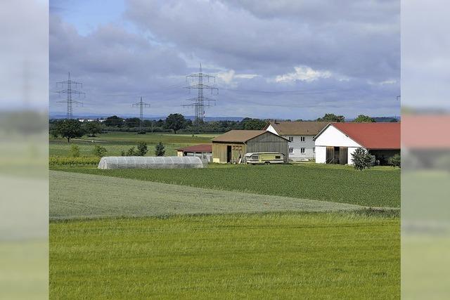 Gebiet für Römerfunde unter Schutz