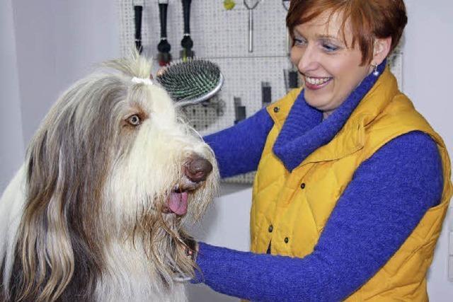 Komplettpflege für Hunde