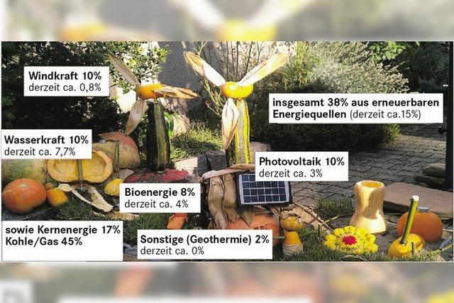 Bis zu 39 Windräder im Hochschwarzwald