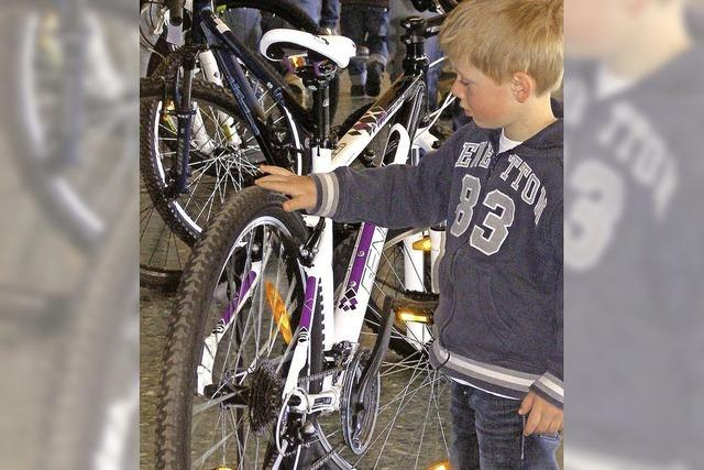 Gebrauchtmarkt für Fahrräder in Neustadt