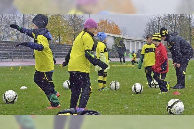 BVB trainiert mit Fußballjunioren