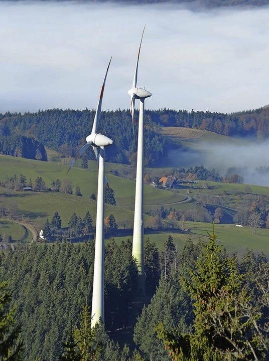 An manchen Standorten wird der Erholun...ächtigt, meint der Schwarzwaldverein.   | Foto: Frey
