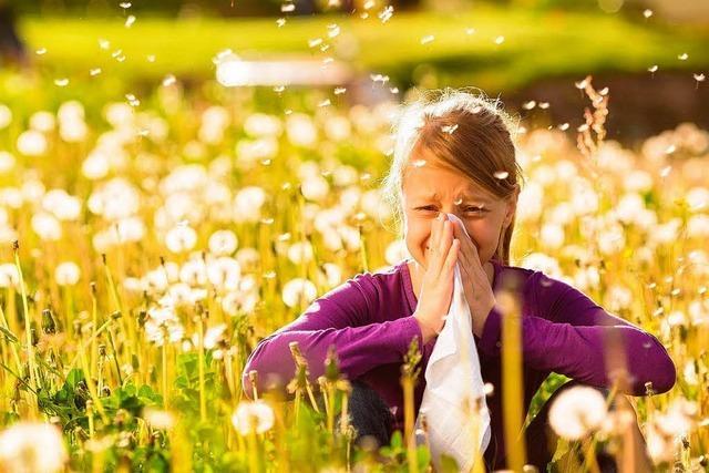 Bald fliegen wieder die Pollen