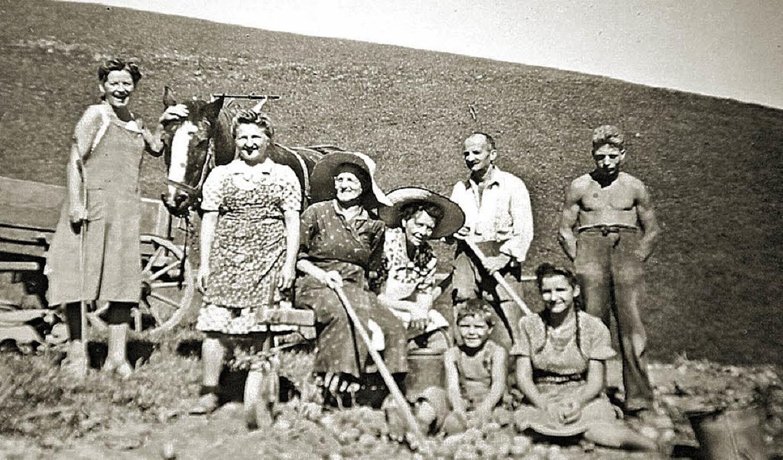 Fritz, der Knecht, und Hugo Zingg (vorne sitzend) bei der Kartoffelernte  | Foto: unbekannt