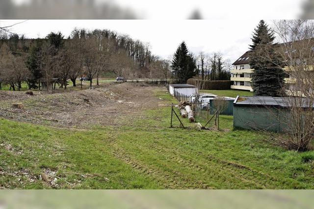 Widerstand gegen Wohnbauvorhaben in Riegel