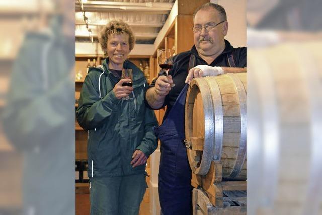 Crashkurs in Weinbau