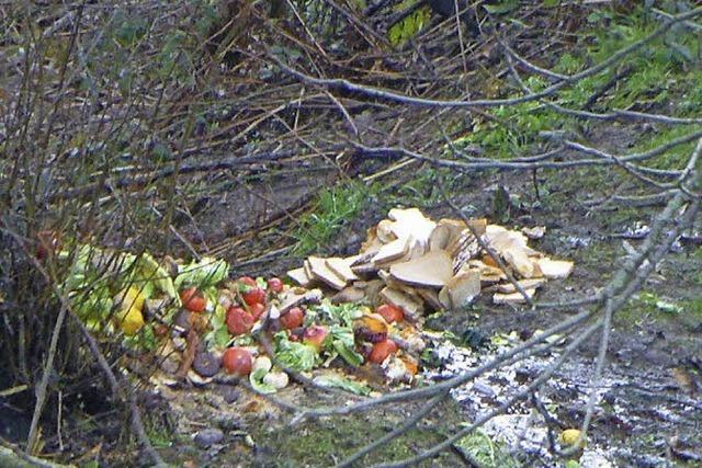 Der Müll ist aus dem Wald geräumt - Täter nicht überführt