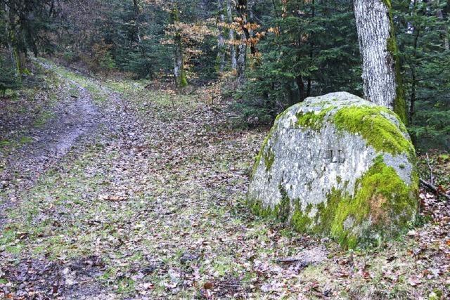 Name für Bestattungswald