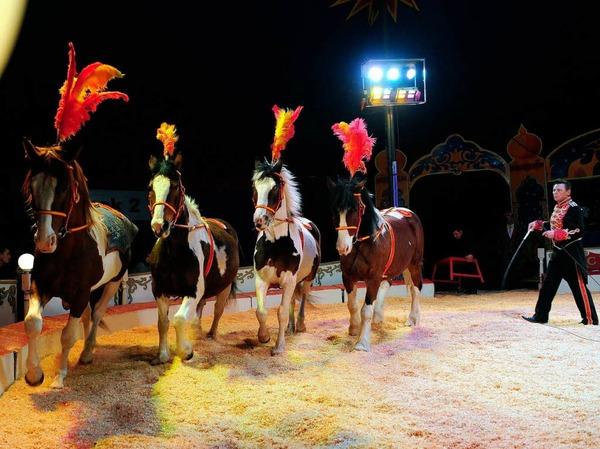 Zirkus Alberti