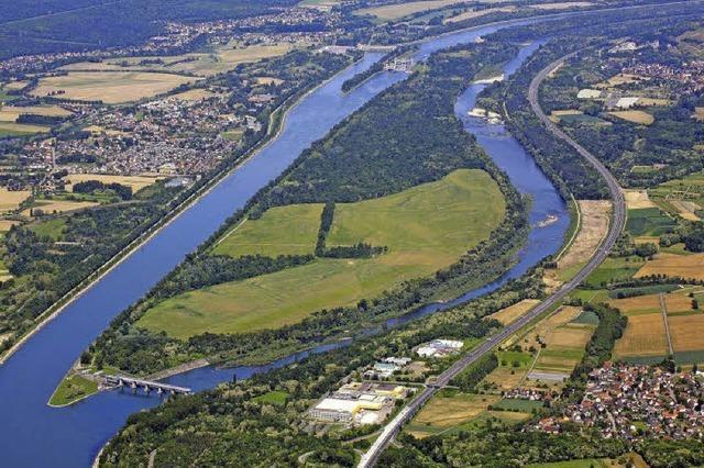Der Oberrhein ist die Landschaft des Jahres 2013/14. An den Rheinufern wird nun der offizielle Start gefeiert