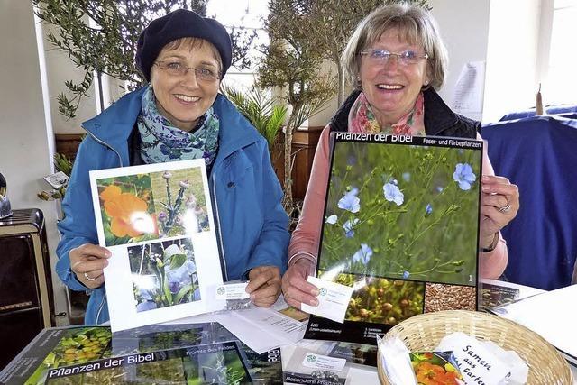 Bibelgartenteam sammelt die Samen