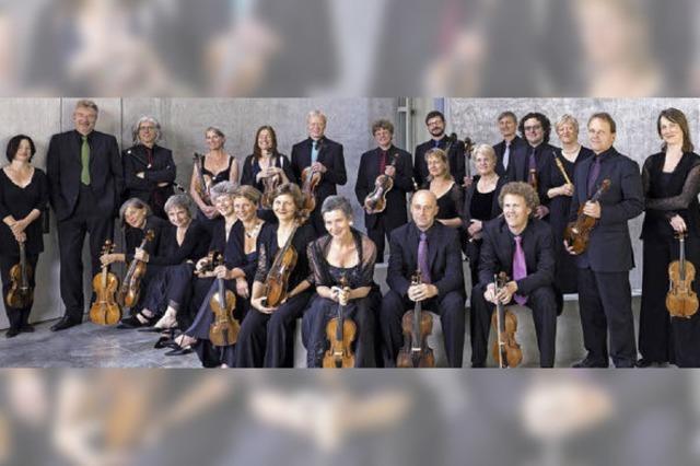 Das Freiburger Barockorchester erleben