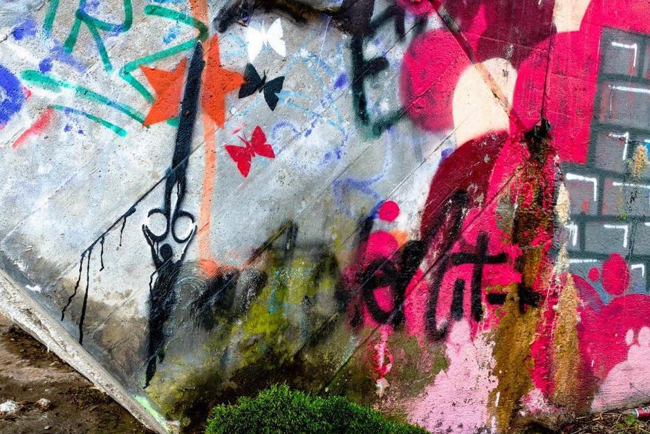 Eine bunte Welt an der Dreisam in Freiburg. (Foto: Huber Carlotta)