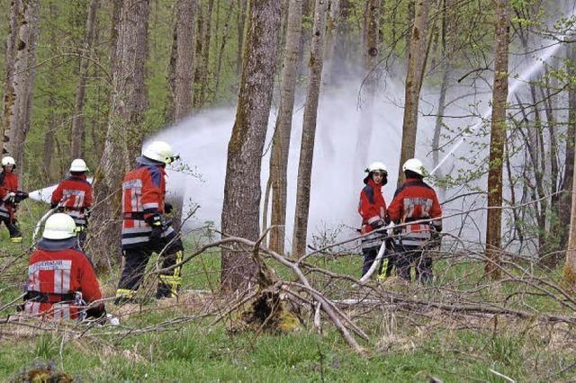 Wenn der Wald Feuer und Flamme ist