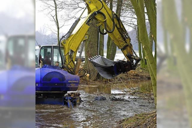 Eisenhaltiges Wasser macht aus dem Fluss eine braune Brühe
