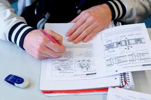 Viele Fünftklässler am Gymnasium versetzungsgefährdet
