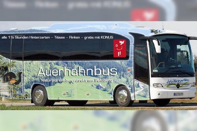Auf den Rinken mit dem Auerhahnbus