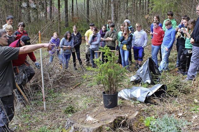 Schüler sammeln neue Lebenserfahrungen im Stadtwald