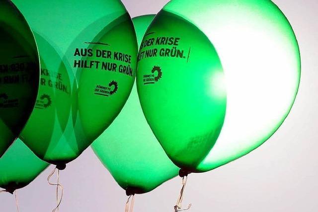 Grüne: In der Steuer-und Sozialpolitik ein großes Rad drehen