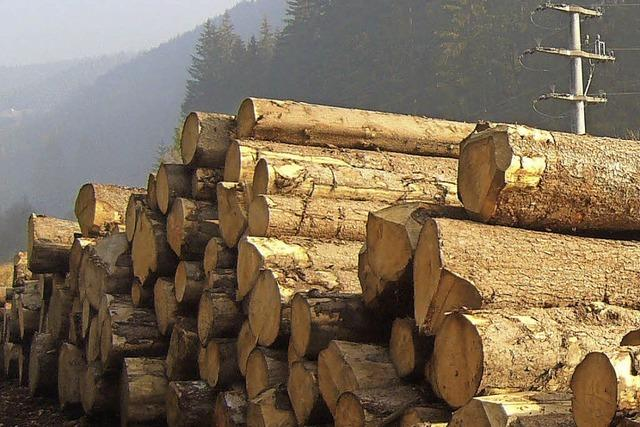 Besitzer verdienen am Wald