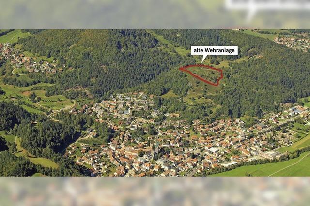 Freie Sicht auf Ur-Schönau