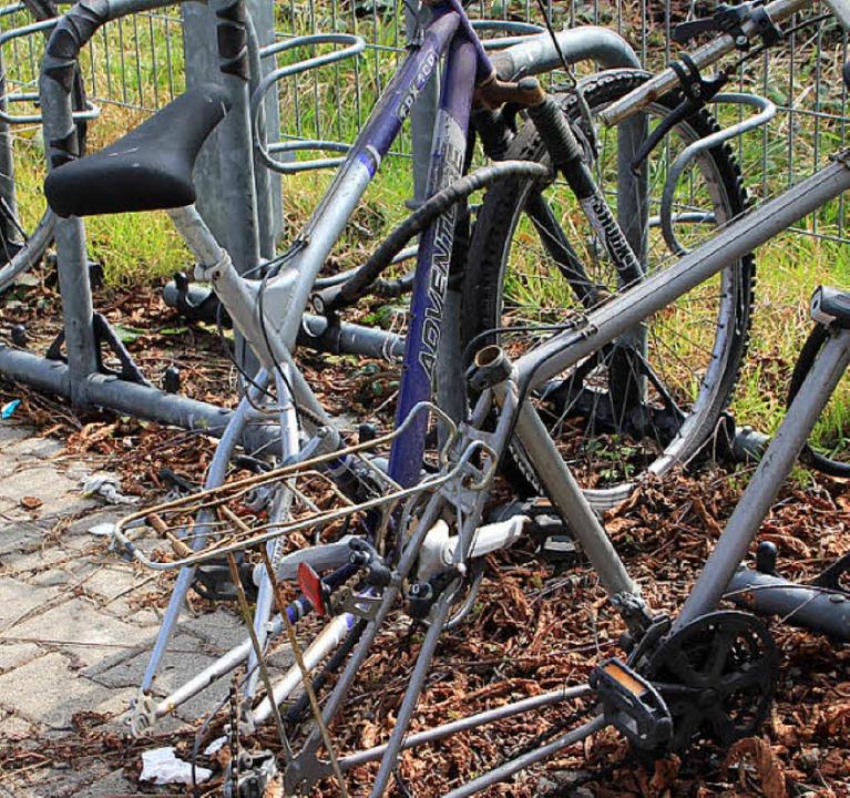 Zwei halbe Räder geben auch kein ganzes.    Foto: Bianca Fritz